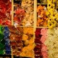 flora-szarazvirag-nagykereskedes-termesek.jpg
