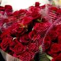 flora_import_rozsa_vasarlas.jpg